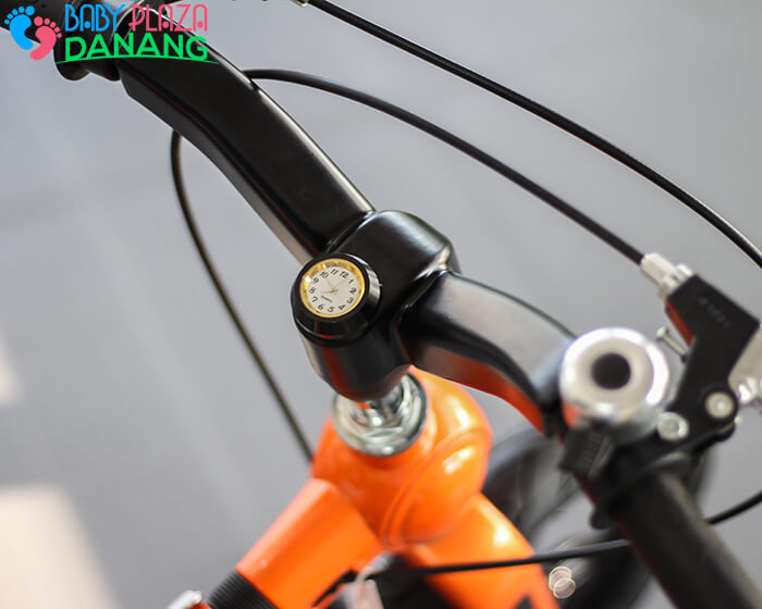 Xe đạp cao cấp Broller SSB 6